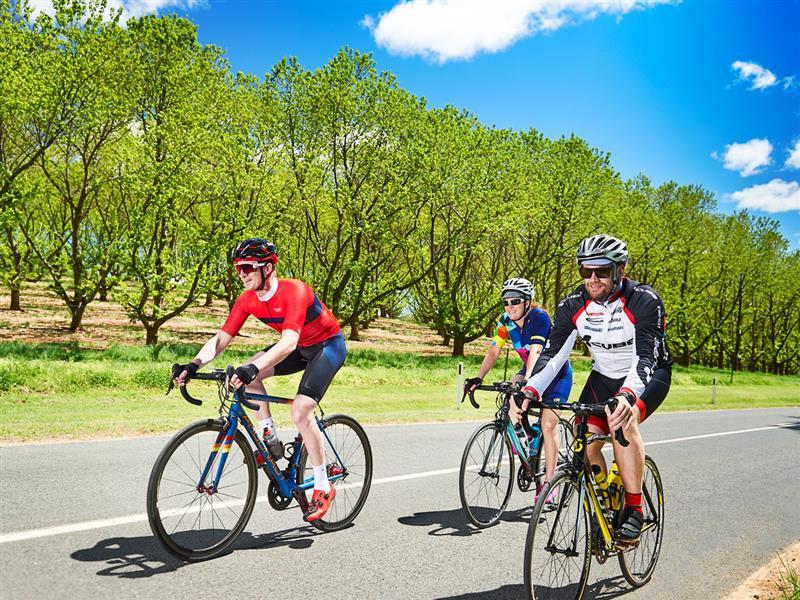 Road cycling, Outdoor activities, Victoria, Australia