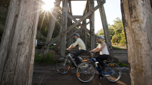 Cycling along the Timboon Trestle Bridge, Great Ocean Road, Victoria, Australia