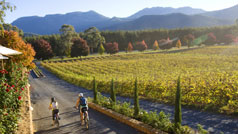 Boynton's Feathertop Winery, High Country, Victoria, Australia