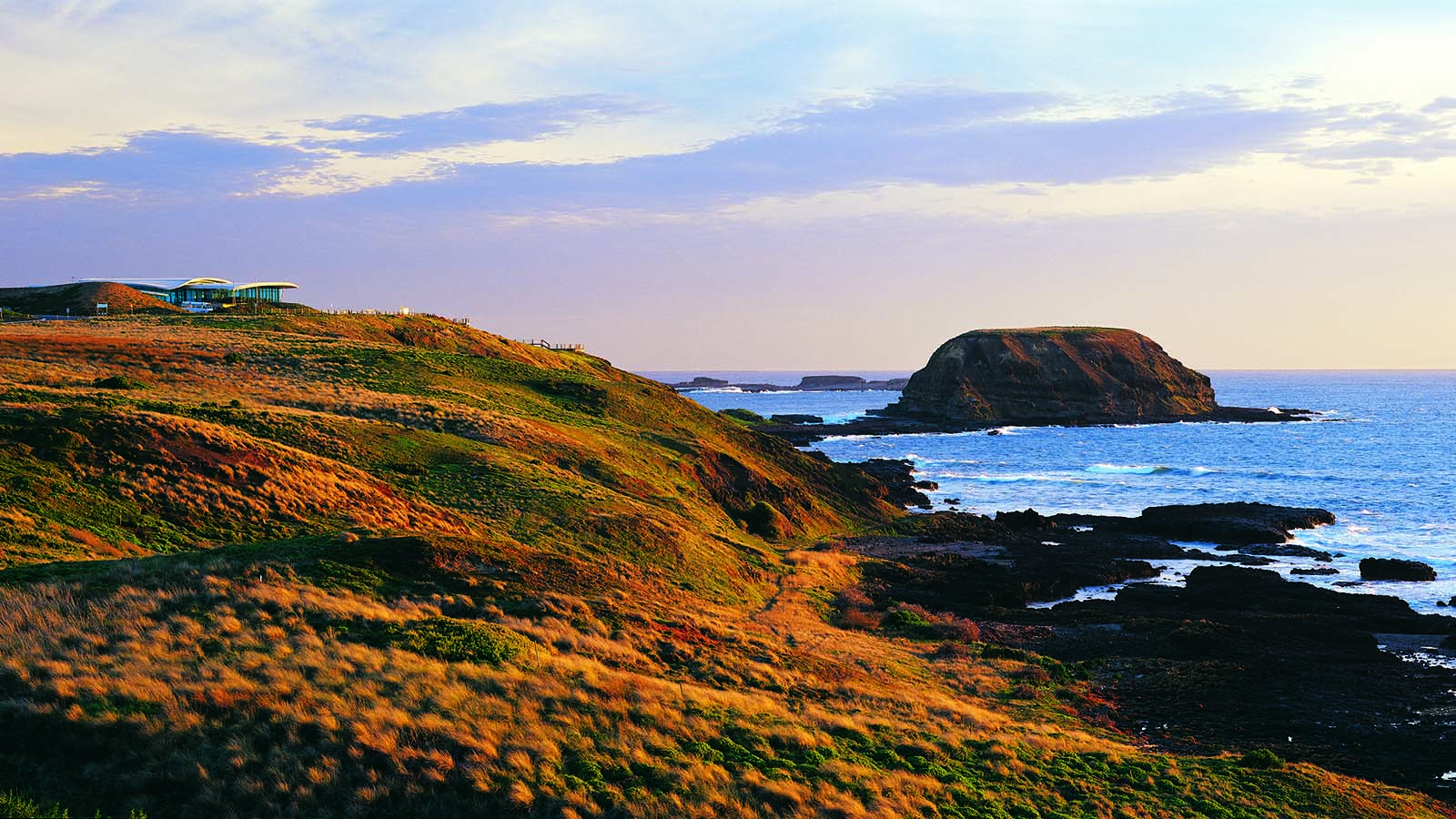 The Nobbies, Phillip Island, Victoria, Australia