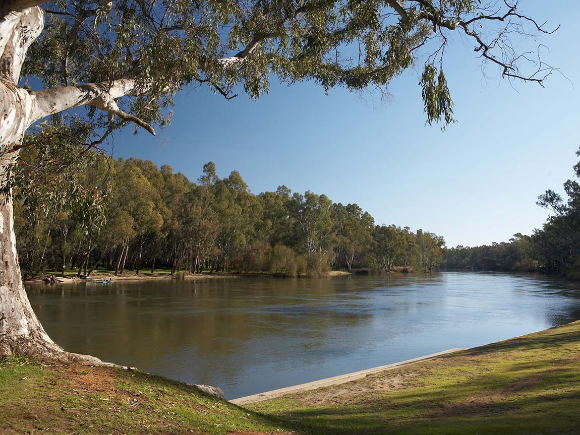 Murray River at Corowa, The Murray, Victoria, Australia