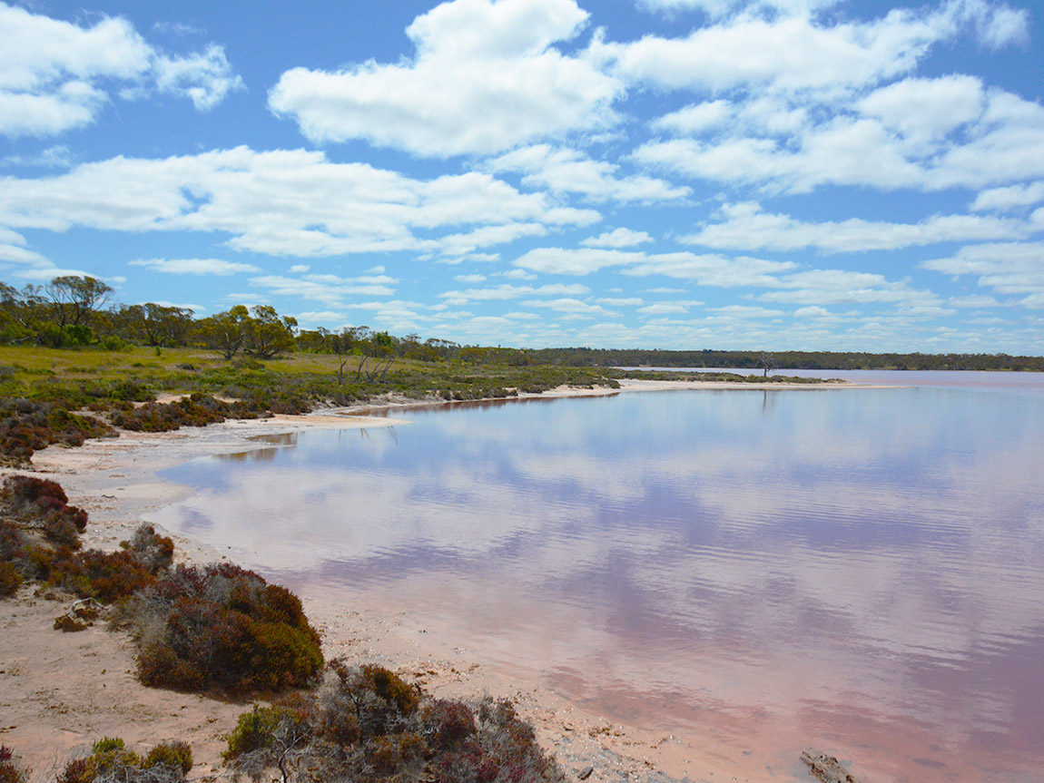Pink Lakes Trail, The Murray, Victoria, Australia