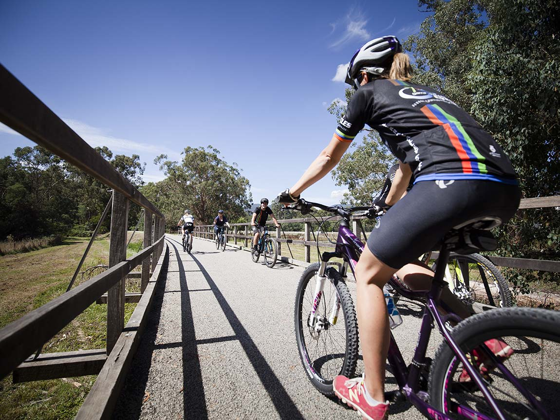 Cycling, Yarra Valley and Dandenong Ranges, Victoria, Australia